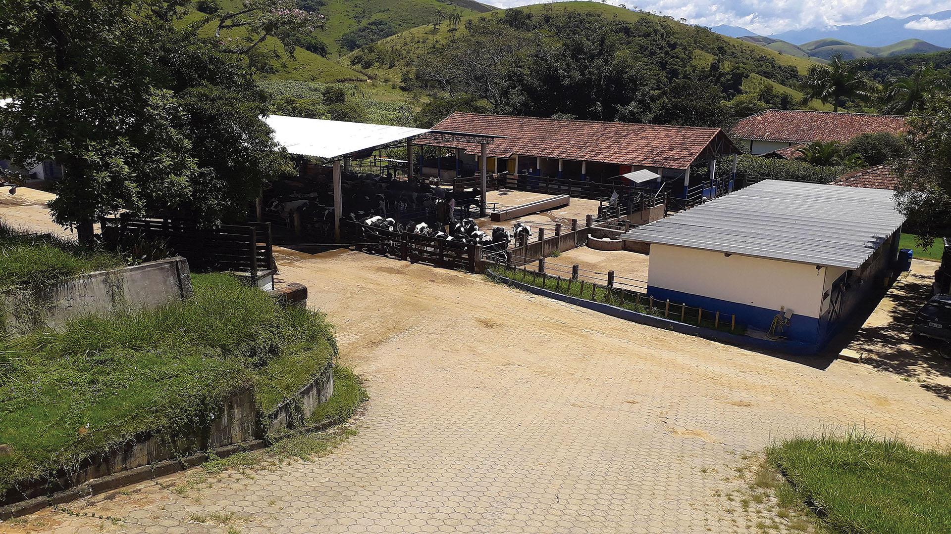 revista-balde-branco-fazenda-01-ed672