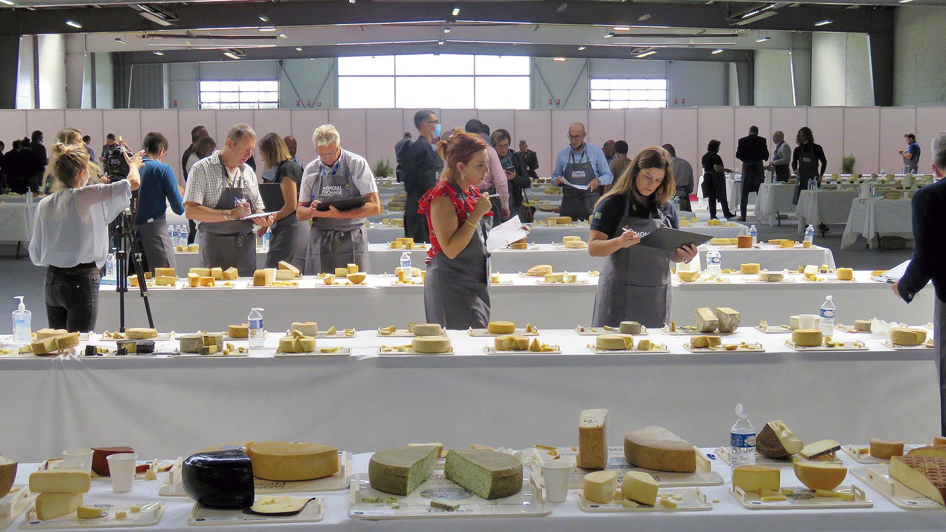 revista-balde-branco-queijos-01-ed679